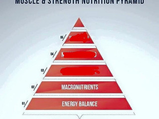 How to set up your nutrition part 2