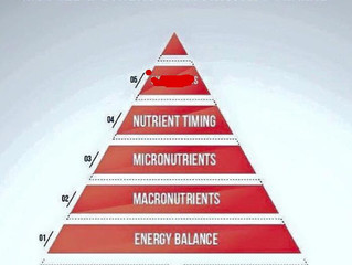 How to set up your nutrition part 4