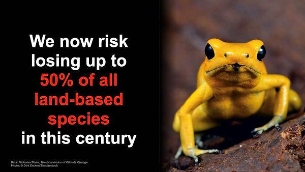 EndangeredSpecies.jpg