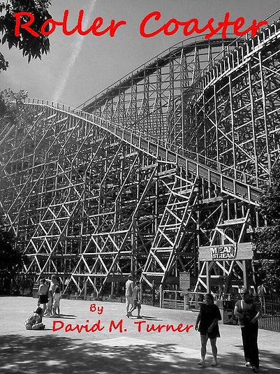 rollercoastercover1.jpg
