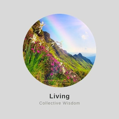 2022 Living Collective Wisdom Immersion (LCW)