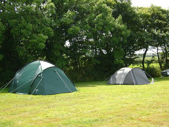 Camping Field 2.jpg