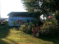 Morning glory at the Scantland farm!!!! _ Love home_