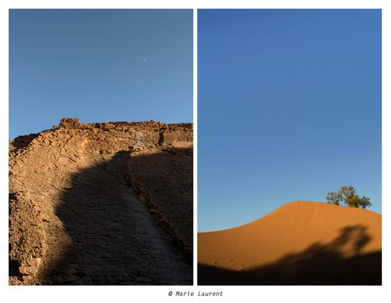 Plénitude désertique -