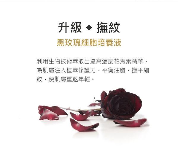 黑玫瑰著陸頁-白-17.jpg