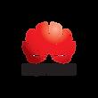 Huawei-colour-portrait-logo-transparent-