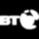 bt-white-transparent-bg-logo.png