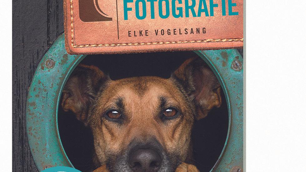 """Fotoratgeber """"Workshop Hundefotografie"""""""