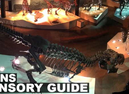 The Houston Museum of Natural Science- Sensory Sensitives and Autism Spectrum Disorders