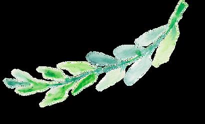 Watercolor Laurel Leaf