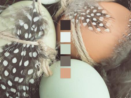 Palette Play - Vol. 03