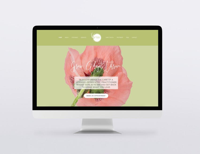 Stephanie Dancer | OMP, M.OM.Sc | Website Design