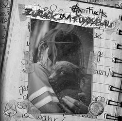 Antifuchs-ZIF-Single.png