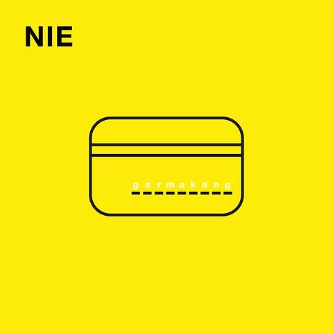 NIE-v2-01-1024x1024.png