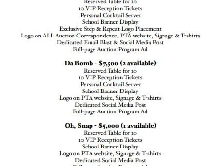 Auction Sponsors!