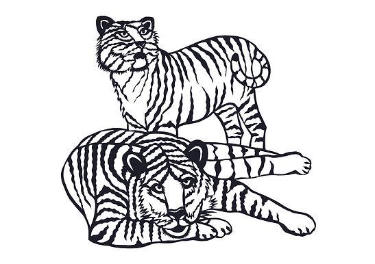 Tiger_Karten_A5quer.jpg