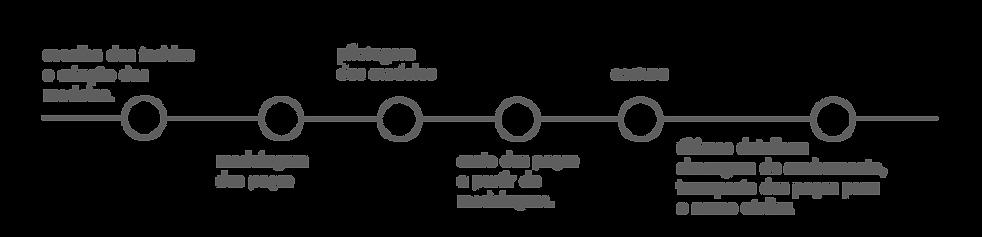 processo-de-produção.png