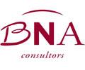 bna consultors.png