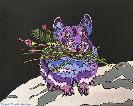 Purple Pika
