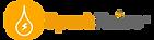 SparkRaise Logo.png
