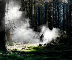 aids woods 2