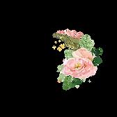 פרח לנעים להכיר.png
