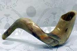 shofars.65111555_std.jpg