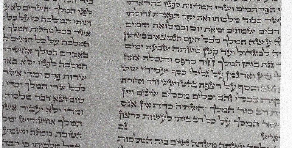 Megilas Esther 15 inch Bais Yosef