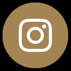 Social Media_Insta