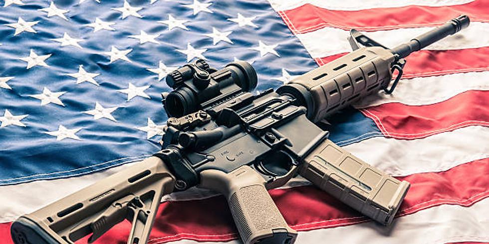 AR-15 Basics: Intro To America's Rifle