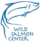 WSC logo blue.jpg
