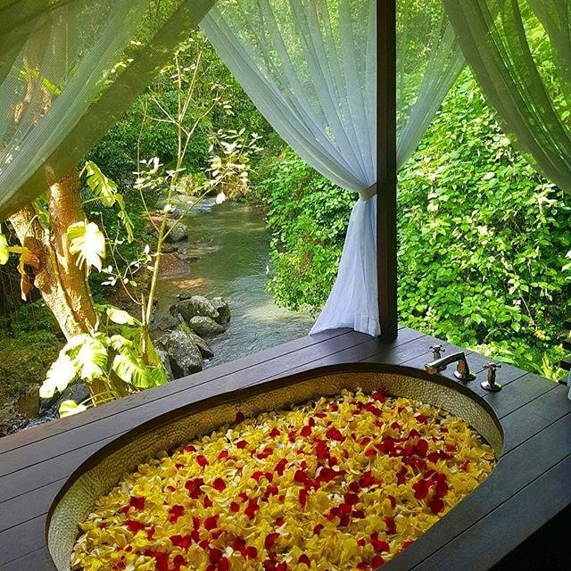 Four Season Flower Bath