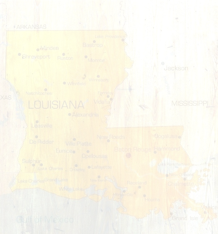 bigstock-Louisiana-4634260_edited_edited