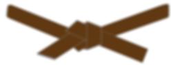 brown belt2.png