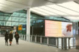 BBW_Airport_Mockup.png
