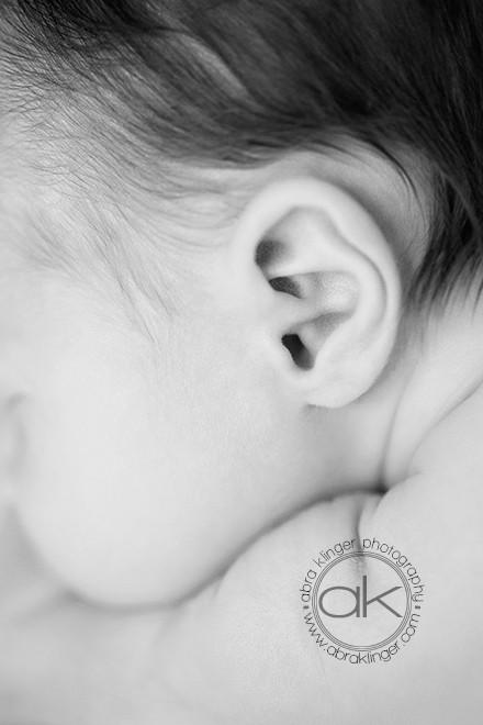 Black and white newborn ear