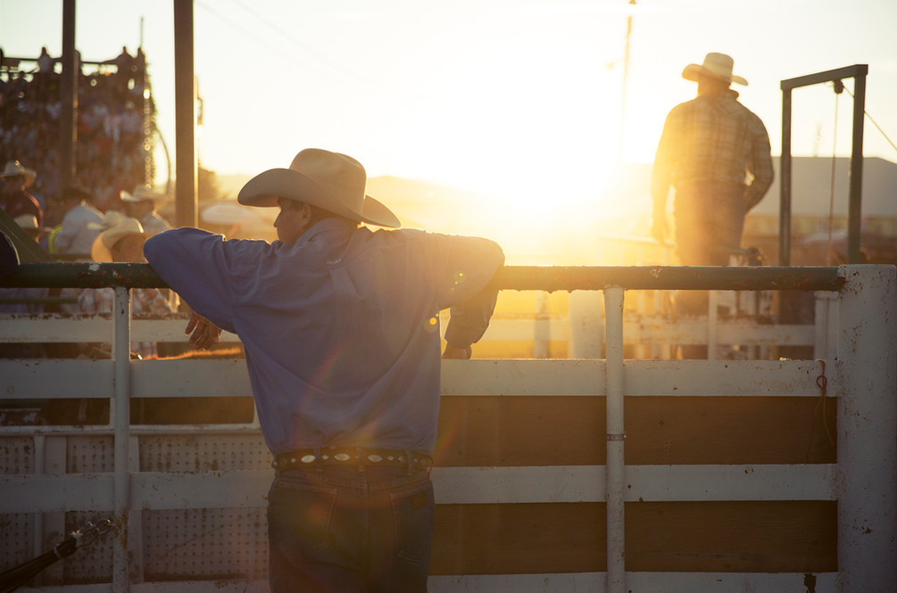 Cowboy 3.jpg