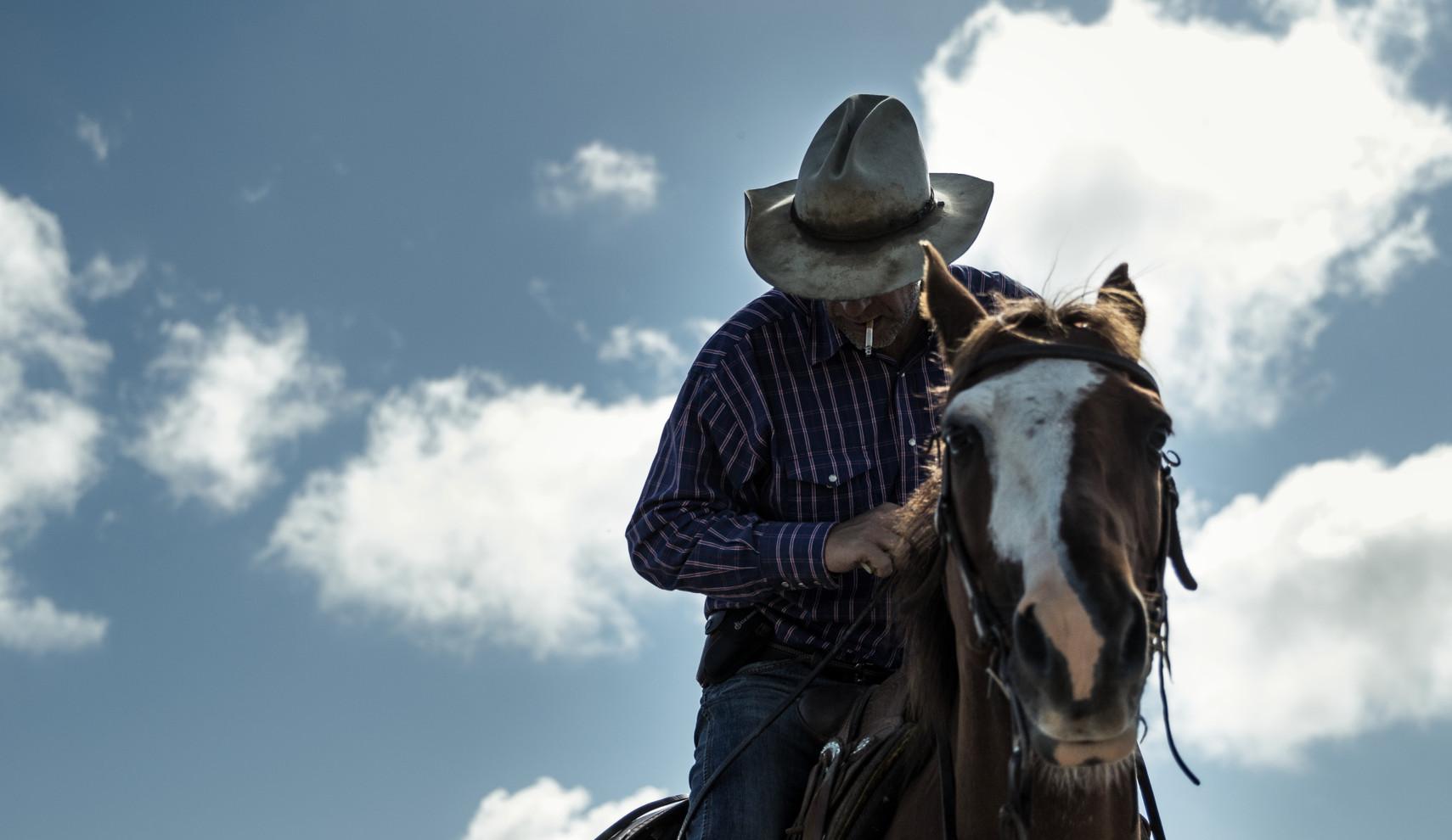 Robert horse Final.JPG
