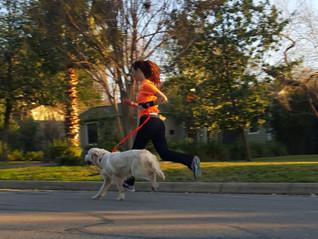 ¿Cuántos kilómetros debo correr a la semana?