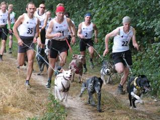 Pasos a seguir antes de inscribir a tu mascota a correr una carrera.