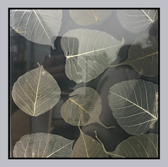 Dried Leaves Laminate