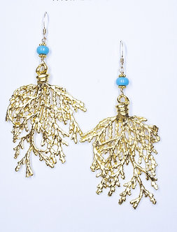 Sea Fan Earrings