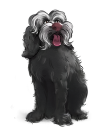 HEATHCLIFF THE DOG
