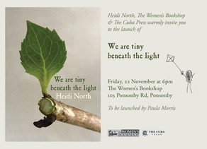 We Are Tiny Beneath the Light by Heidi North, Book Launch Invitation