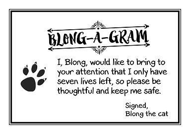 Blong-a-Grams V311 (7).jpg