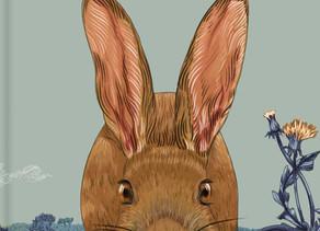 Hare & Ruru by Laura Shallcrass