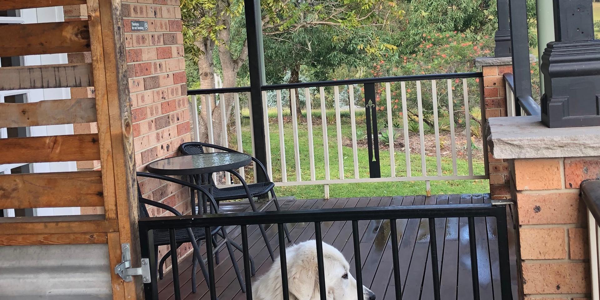 Gated pet friendly verandah