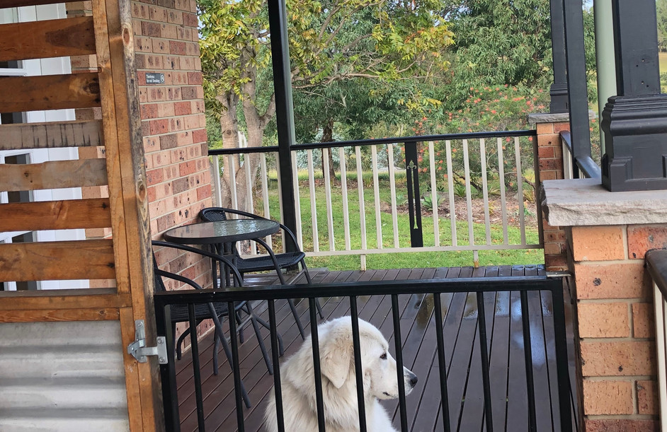 Gated pet friendly verandah