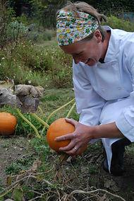 Wendy Davies jardin potiron garden pumpkin