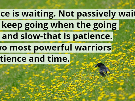 Patience Or Perseverance?